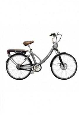 VELO A ASSISTANCE ELECTRIQUE SOLEXITY SMART gris/fauve 26