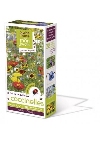 Prairies fleuries : j'attire les coccinelles 30 m2