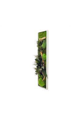 Tableau végétal gamme nature, rectangle L 25  x 115 cm