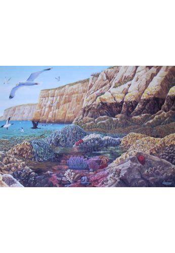 CARTE POSTALE FRAPNA GRES OCEANIQUES