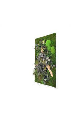 Tableau végétal gamme nature, rectangle XL 60  x 100 cm