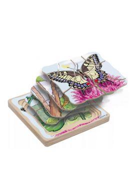 Puzzle développement papillons