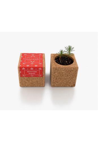 Grow Cube aimanté Sapin de Noël - boite rouge