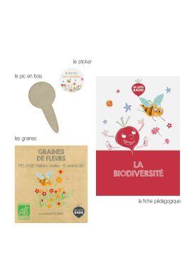 Mini kit de graines BIO de mélange de fleurs mellifères