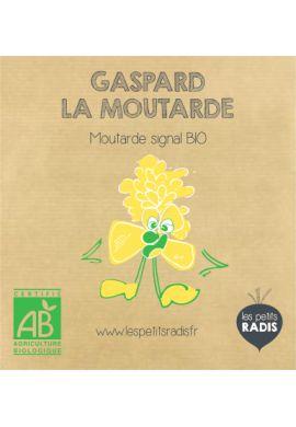 Mini kit de graines BIO de Gaspard la moutarde