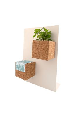Grow Cube aimanté Pensée