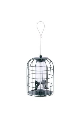 Mangeoire oiseaux pare-écureuils