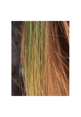 Mascara bio cheveux - vert