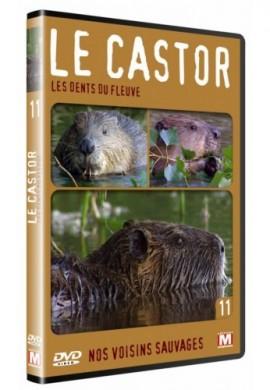 DVD le castor, les dents du fleuve