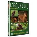 DVD Ecureuil – Génie des arbres