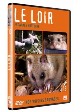 DVD Loir, Escapade nocturne
