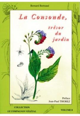 La consoude, trésor du jardin