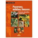Pucerons mildious limaces