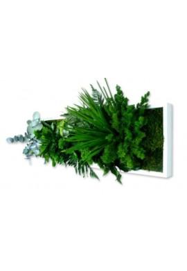 Tableau végétal gamme nature, rectangle panoramique 20  x 70 cm